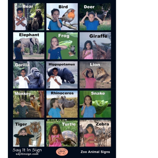 Zoo Animal Signs - ASL Lenticular Poster